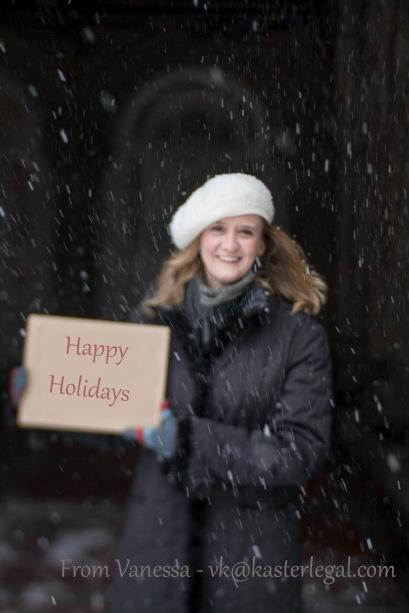 Happy Holidays 2013 from vk@kasterlegal.com